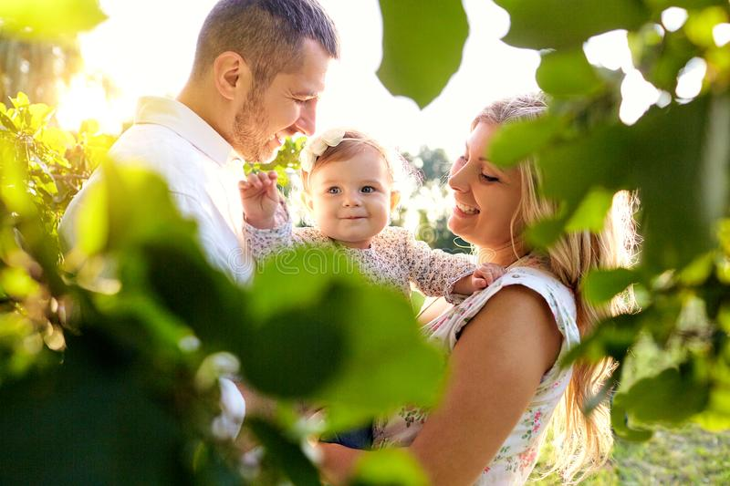 Happy family in a park in summer. Happy family in a park in summer autumn. Mother, father and baby play in nature in the rays of sunset stock image