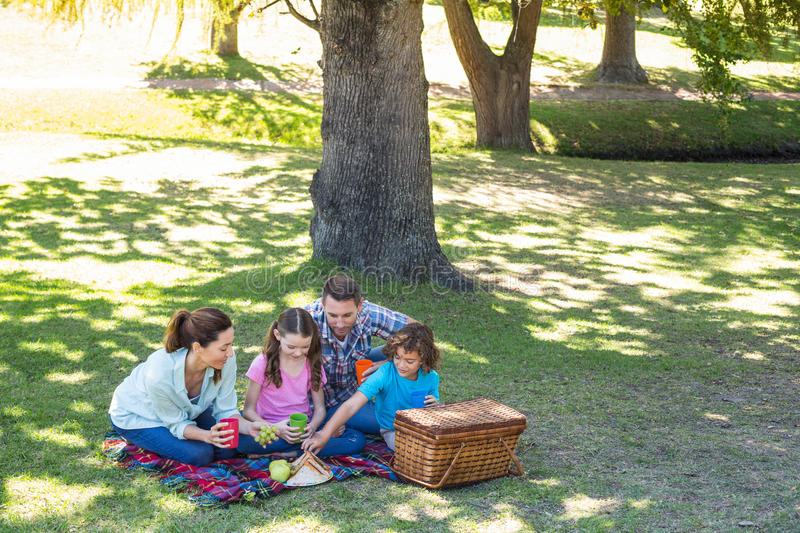 Happy family on a picnic in the park. On a sunny day stock images