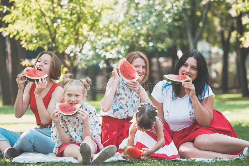 Happy family at a picnic royalty free stock photos