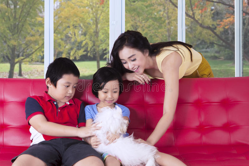 Happy family play together with dog royalty free stock images