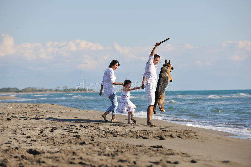 Download Happy Family Playing With Dog On Beach Stock Image - Image: 17023027