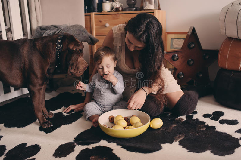 Happy family playing at home with dog. Mother and baby boy eating cookies royalty free stock images