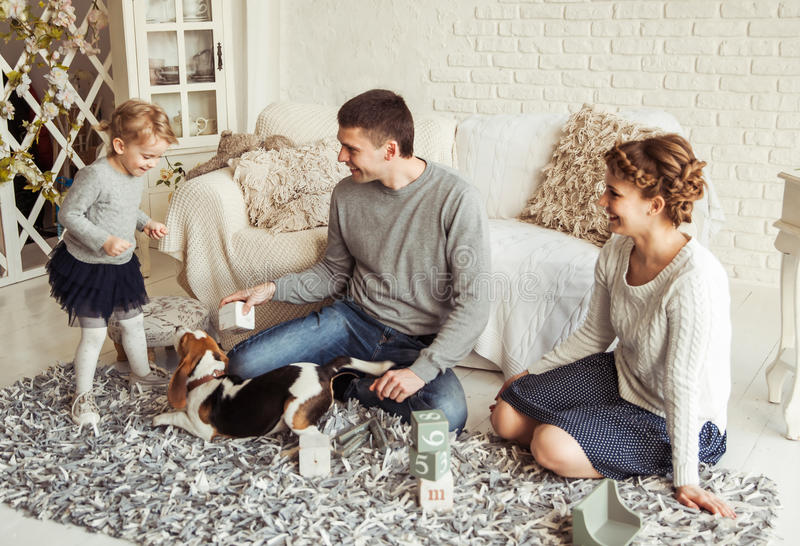 Happy family playing with a pet dog in the spacious living room royalty free stock images