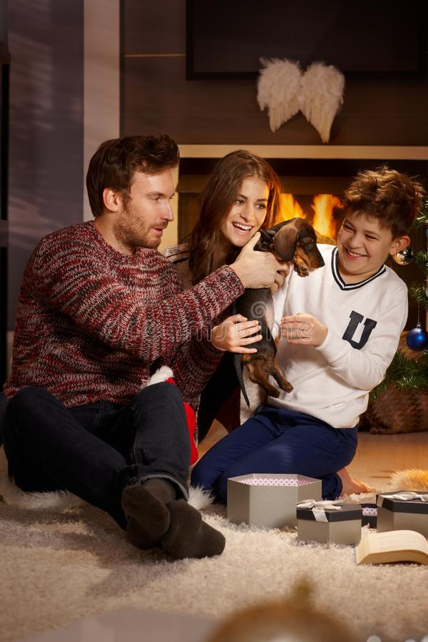 Happy family with puppy at christmas. Happy family playing with dachshund puppy received for christmas stock photography