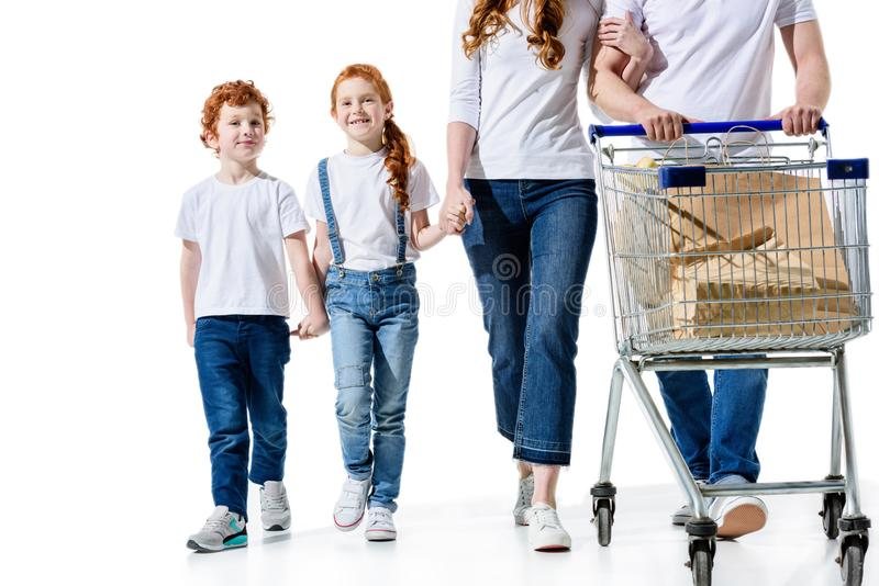 Cropped shot of family with two kids carrying shopping trolley. Isolated on white royalty free stock photos