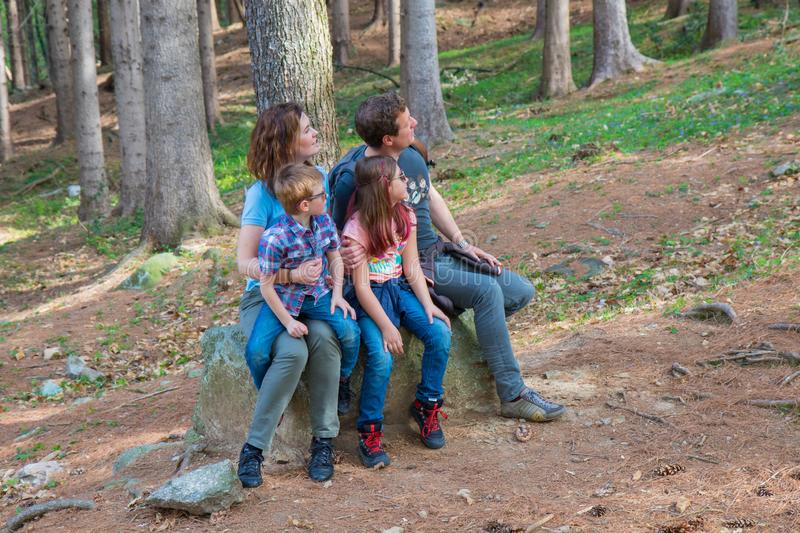 Happy family are sitting on the trunk of a tree in a forest stock photography