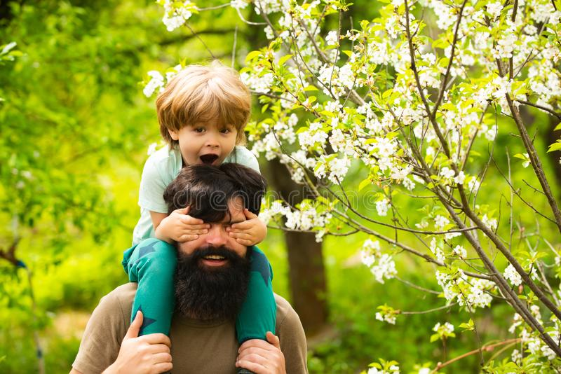 Happy family. Son and father together. Walk in the park. Happy childhood. Responsible parents. Weekends. Weekend father. Attractive boy sits on the shoulders stock images
