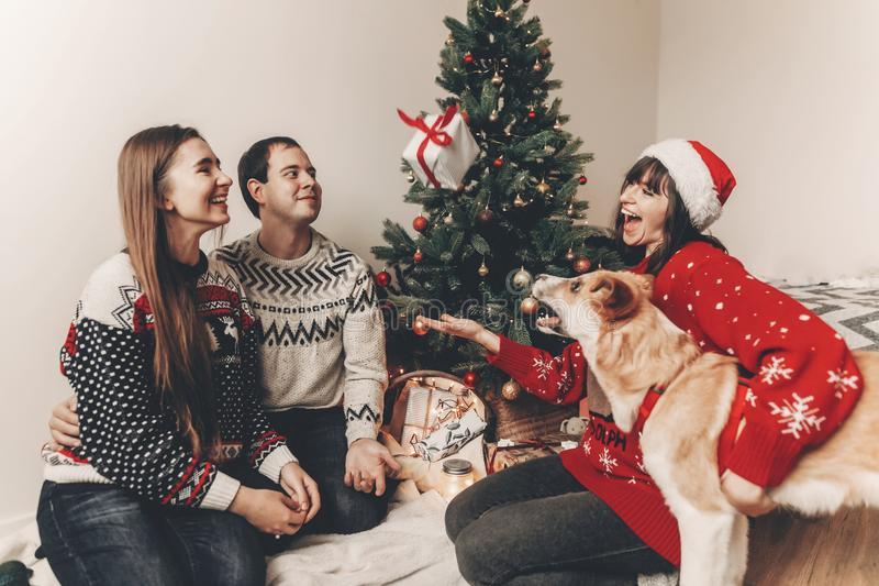 Happy family in stylish sweaters and cute dog having fun at christmas tree with lights. atmospheric emotional moments. merry. Christmas and happy new year royalty free stock photo