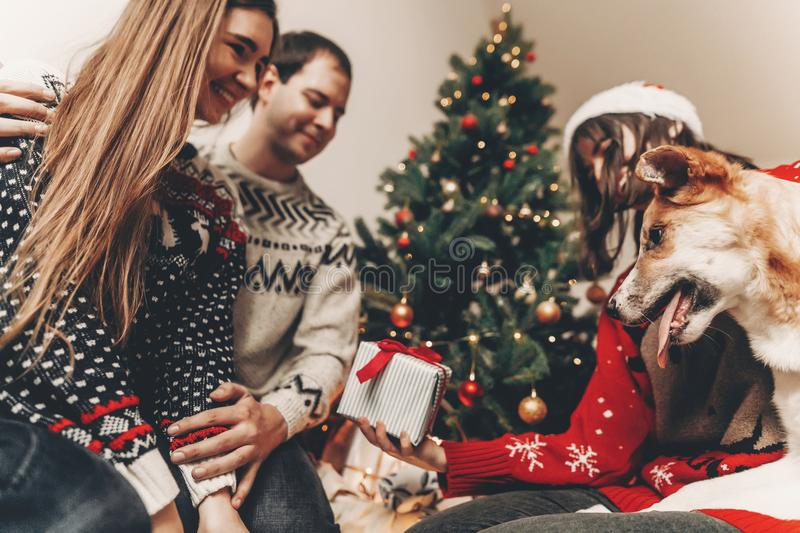 Happy family in stylish sweaters and cute dog having fun at christmas tree with lights. atmospheric emotional moments. merry. Christmas and happy new year stock photos