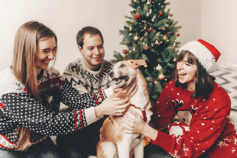 Happy family in stylish sweaters and cute dog having fun at christmas tree with lights. atmospheric emotional moments. merry. Christmas and happy new year stock images
