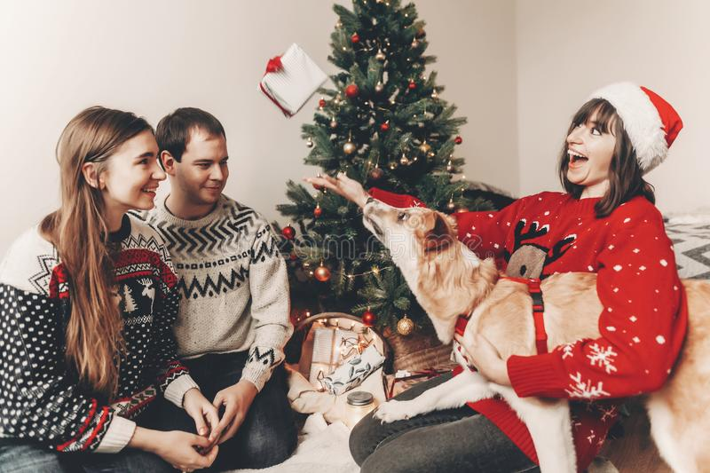 Happy family in stylish sweaters and cute dog having fun at christmas tree with lights. atmospheric emotional moments. merry. Christmas and happy new year stock photo