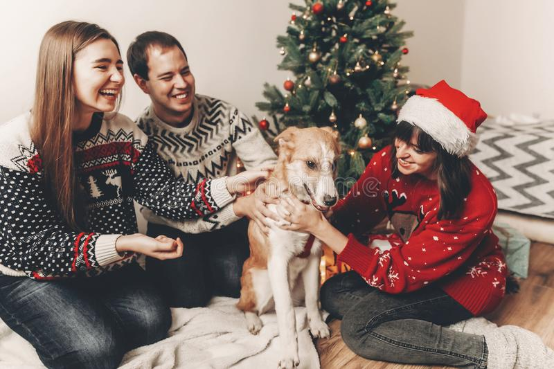 Happy family in stylish sweaters and cute dog having fun at christmas tree with lights. atmospheric emotional moments. merry. Christmas and happy new year royalty free stock photos