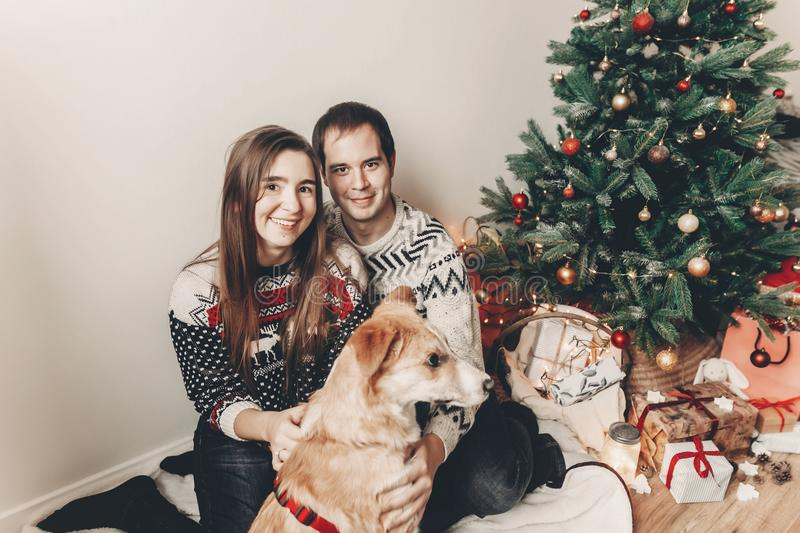 Happy family in stylish sweaters having fun with cute dog in festive room with christmas tree. emotional moments. merry christmas. And happy new year concept royalty free stock images