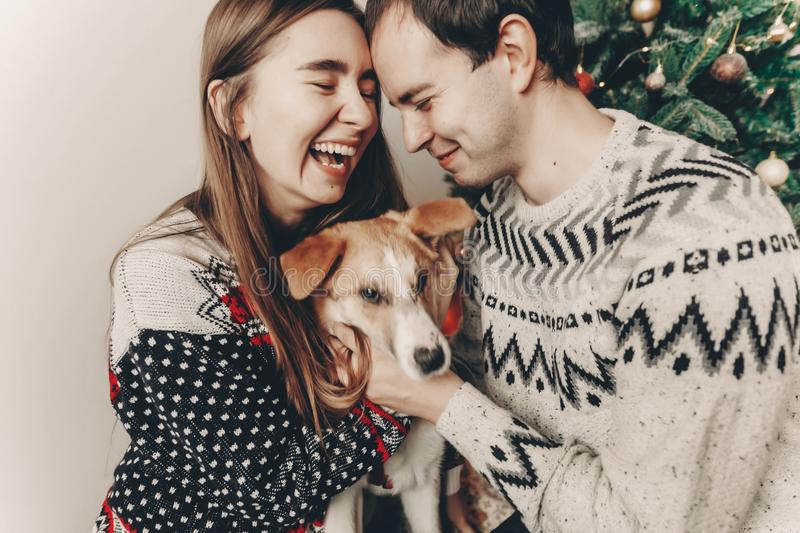 Happy family in stylish sweaters having fun with cute dog in festive room with christmas tree. emotional moments. merry christmas. And happy new year concept royalty free stock photos
