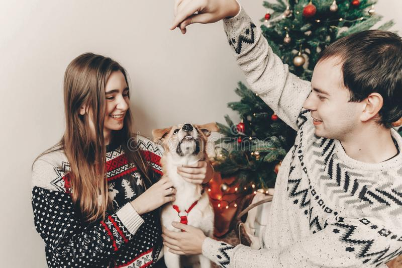 Happy family in stylish sweaters having fun with cute dog in festive room with christmas tree. emotional moments. merry christmas. And happy new year concept royalty free stock image
