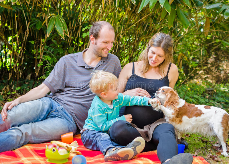 Happy family with their pregnant mother having picnic in park royalty free stock photography