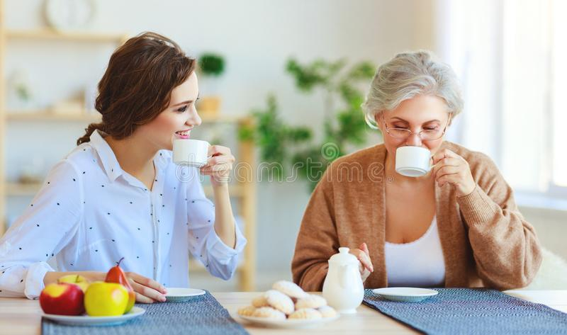 Happy family two generations old mother and adult daughter stock photo