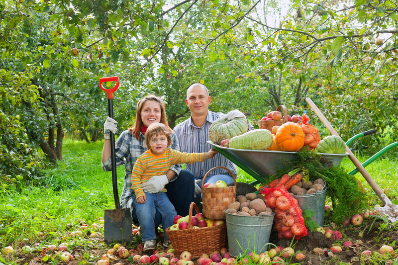 Download Happy  Family With Vegetables Harvest Stock Photo - Image: 26701826