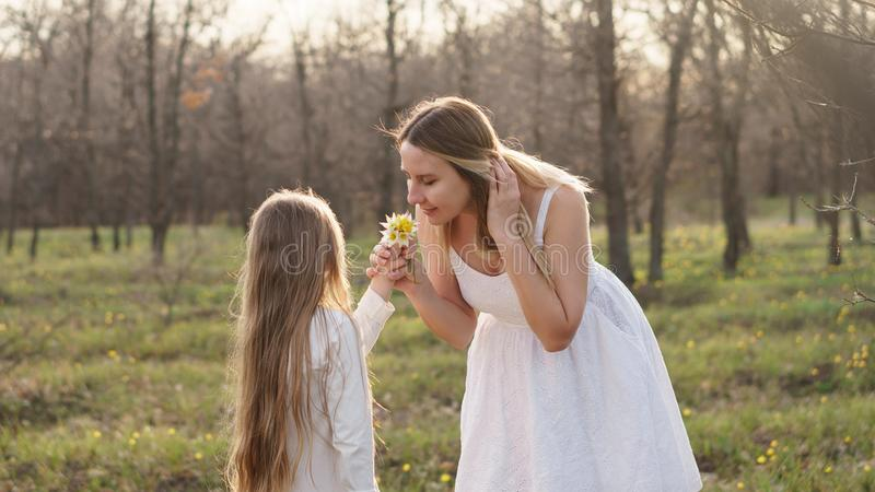 Happy family walks in the spring meadow. Portrait of young attractive single mother. She inbreathe the scent of forest tulips. Mom with her daughter for walk royalty free stock images