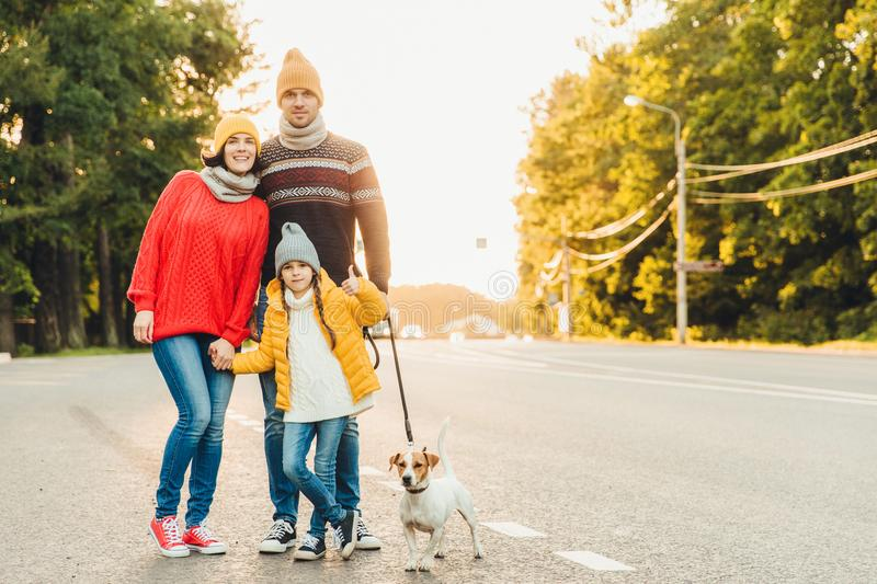 Happy family wear warm clothes walk with dog on road, stand close to each other as pose in camera. Little girl shows ok sign as be royalty free stock image