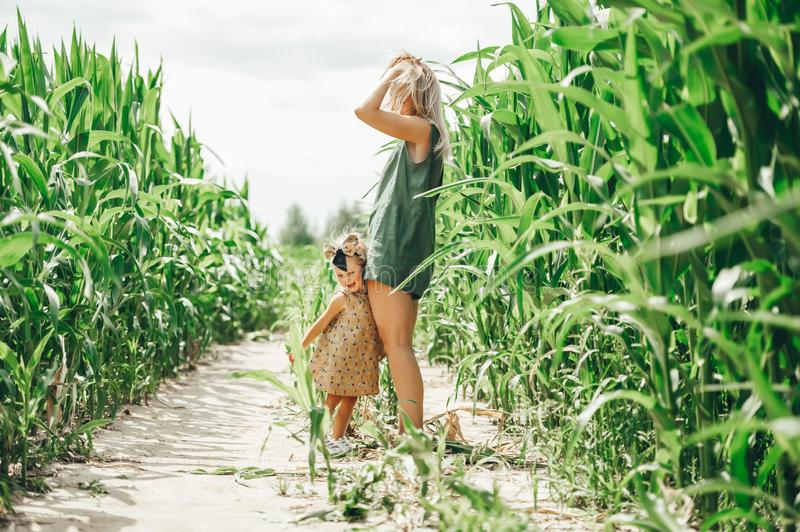 Happy family: a young beautiful woman with her little cute daughter walking in the corn field stock photography