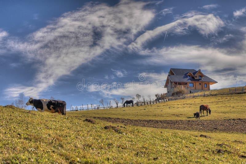 Happy farm royalty free stock image