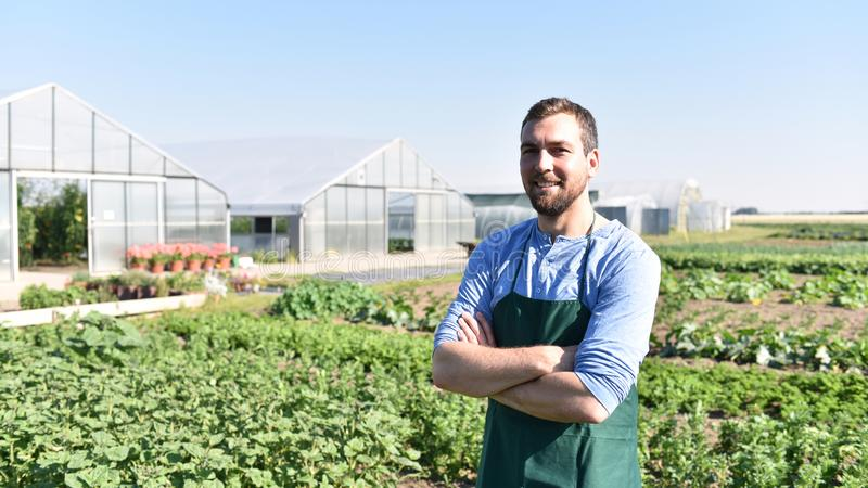 Happy farmer growing and harvesting vegetables on the farm stock photo