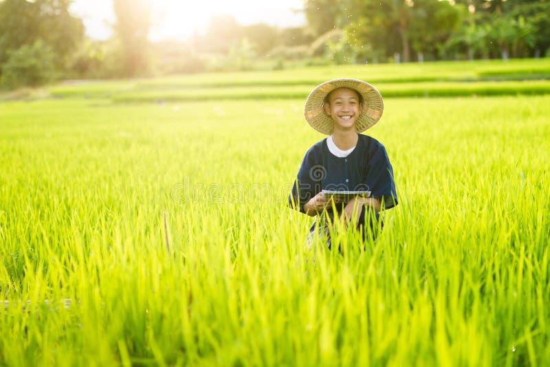Happy farmer in middle green organic rice farm stock photo