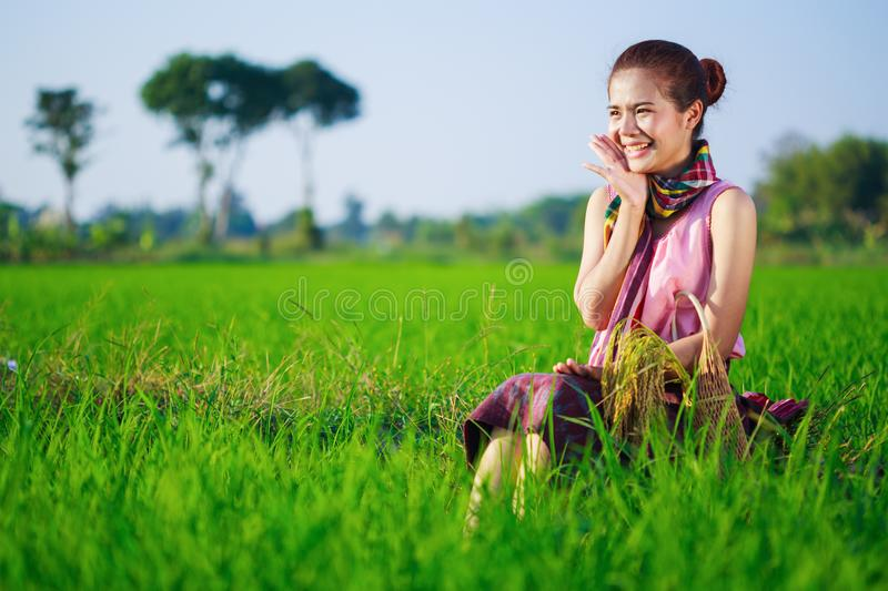 Happy farmer woman sitting in rice filed, Thailand royalty free stock photography