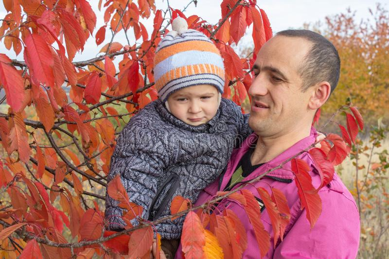 Happy father with son autumn, father shows his red leafy tree to his son stock photos