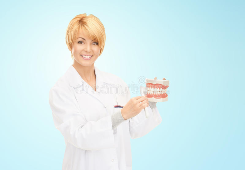 Happy female doctor with toothbrush and jaws model royalty free stock image