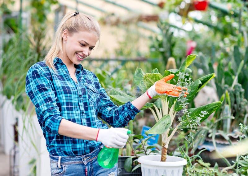 Happy female gardener stock images