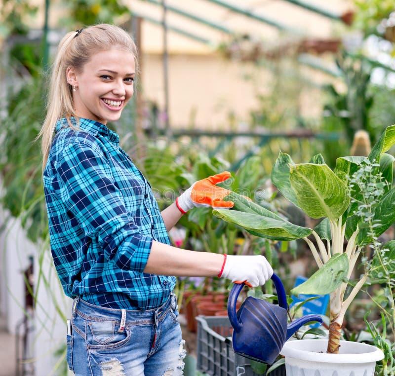 Happy female gardener stock photos