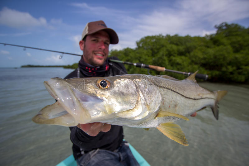 Happy Fisherman holding a good size Snook. A man holding a Snook fish caught with lure, somewhere on the flats of Belize next too a mangrove. This fish is known stock image