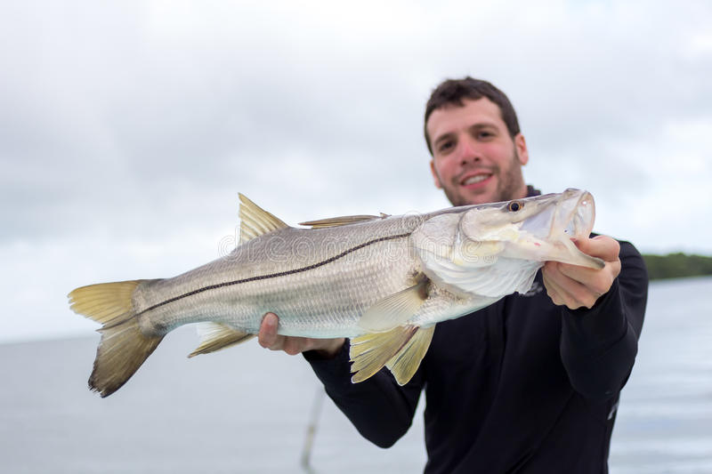 Happy Fisherman holding a good size Snook. A man holding a Snook fish caught with lure, somewhere on the flats of Belize next too a mangrove. This fish is known royalty free stock images