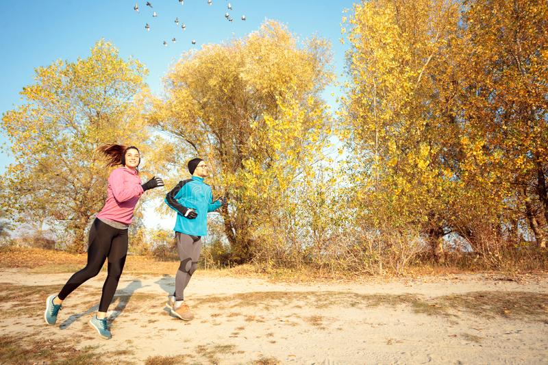 Happy fit young couple running through forest in early sunny autumn morning royalty free stock image