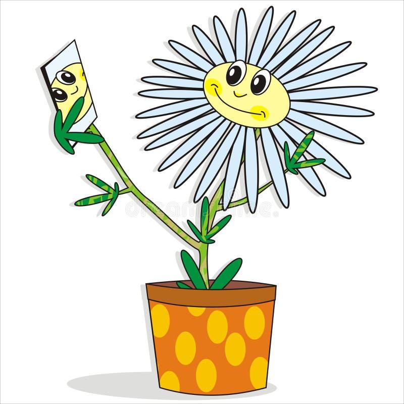 Happy Flower Stock Photo
