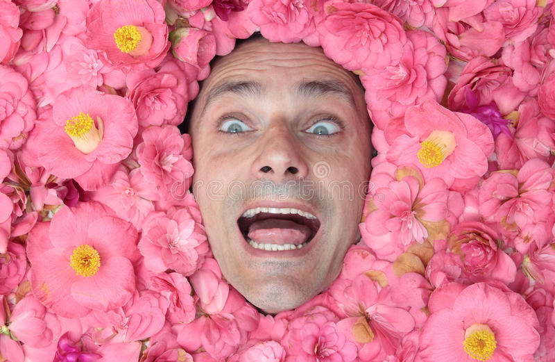Download Happy flower man stock photo. Image of euphoria, funny - 30543462