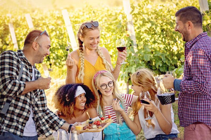 Happy friends in vineyard tasting wine - Young multiracial people enjoying time together outside at countryside royalty free stock photography