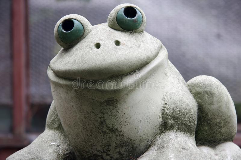 Download Happy Frog stock photo. Image of frog, smiling, beam, kermit - 616778