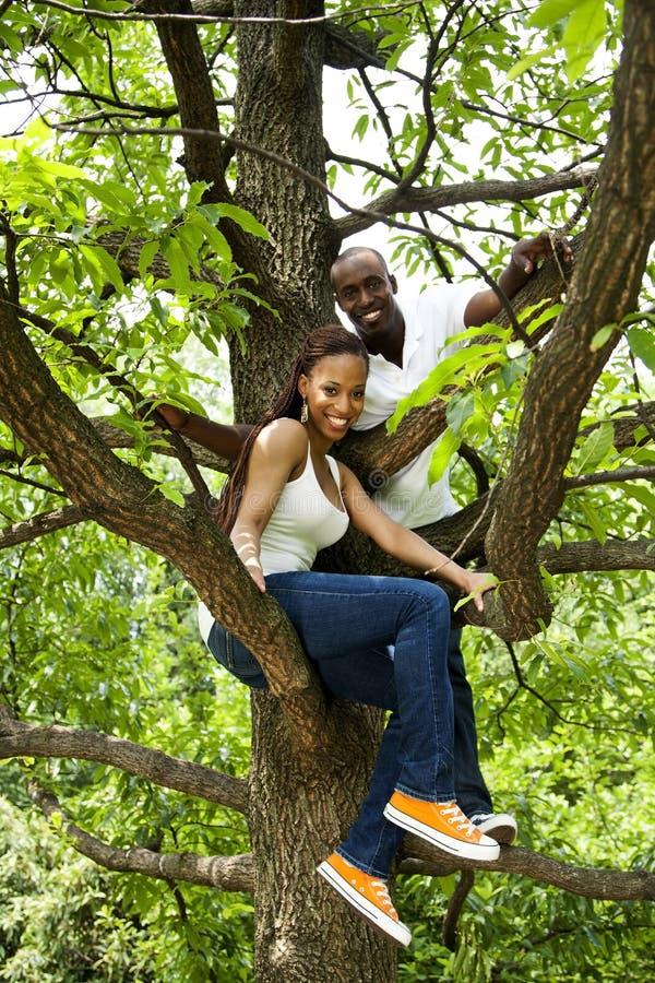 Happy fun African couple in tree stock photos