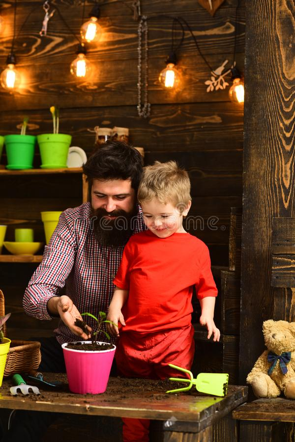 Happy gardeners with spring flowers. bearded man and little boy child love nature. Flower care watering. Soil royalty free stock image