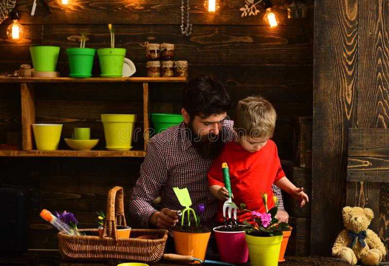 Happy gardeners with spring flowers. Family day. Greenhouse. bearded man and little boy child love nature. Father and. Happy gardeners with spring flowers royalty free stock image