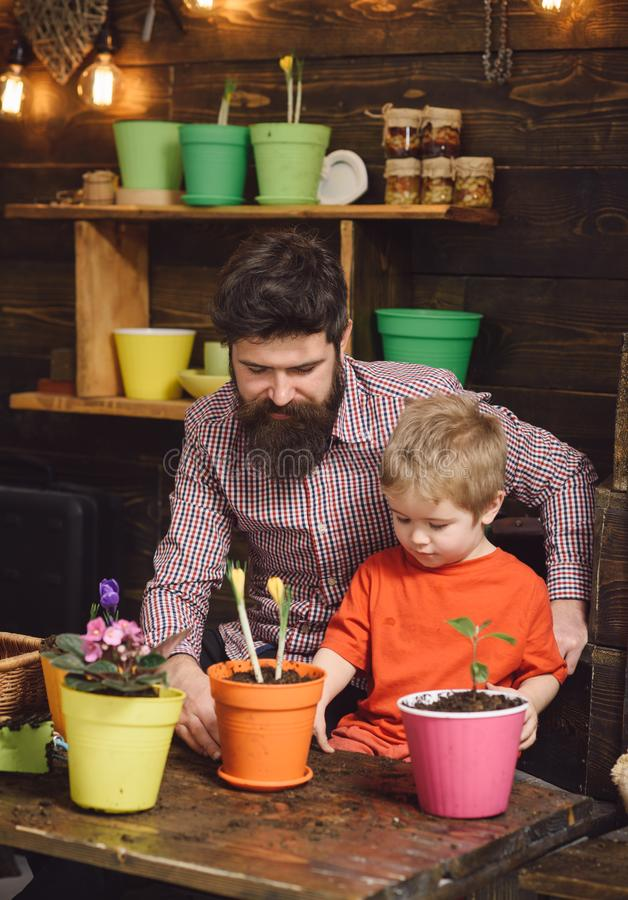 Happy gardeners with spring flowers. Family day. Greenhouse. bearded man and little boy child love nature. Father and. Happy gardeners with spring flowers royalty free stock photo