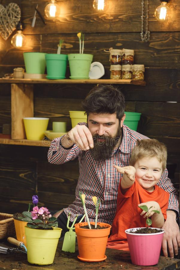 Happy gardeners with spring flowers. Family day. Greenhouse. bearded man and little boy child love nature. Father and stock photo