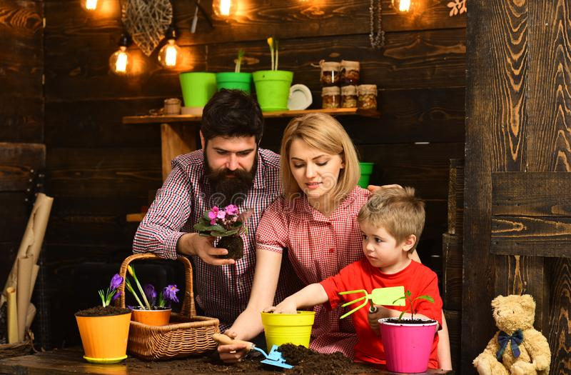 Happy gardeners with spring flowers. Family day. Greenhouse. Flower care watering. Soil fertilizers. Father and son with. Mother. woman, men and little boy love royalty free stock images