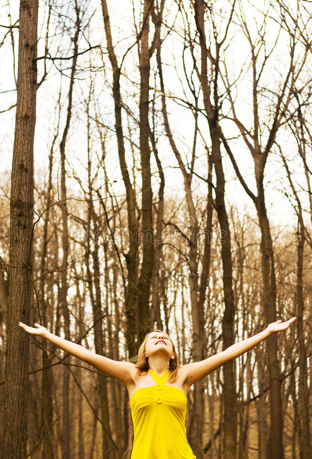 Download Happy girl enjoying nature stock image. Image of forest - 14162843