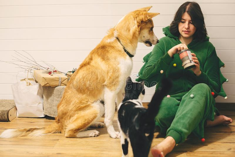 Happy girl in festive pajamas feeding dog and cat with canned food, sitting on floor with christmas presents in stylish room. royalty free stock images