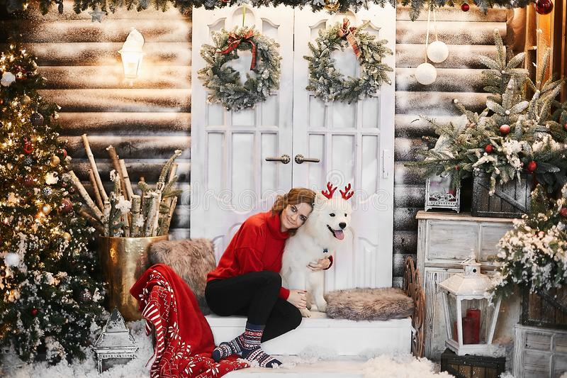 Happy girl in red new year sweater and Scandinavian socks, sits on the stairs and hugging cute white Samoyed dog with royalty free stock image