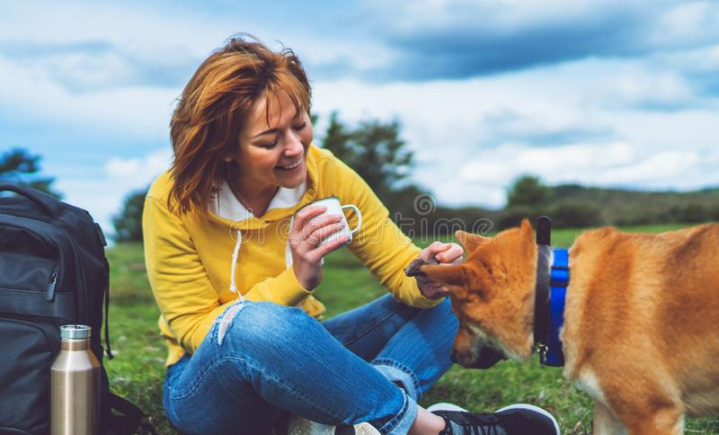 Happy girl with smile drink cup playing with red japanese dog shiba inu on green grass in the outdoors nature park, beautiful royalty free stock image